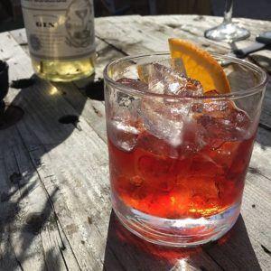 Gin guia de marcas - review