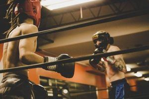 Luva de box e muay thai guia de marcas